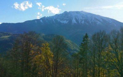 Letzte goldene Herbsttage und erster Schnee auf dem Ötscher – Rückblick auf ein abwechslungsreiches Halbjahr